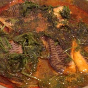 Filetes de pescado al culantro